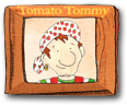 Tomato Tommy